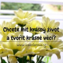 ivakolarova.cz_do-zivota-krasu_fb