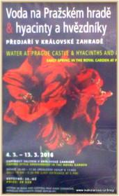 vystava-PH_20_ivakolarova.cz